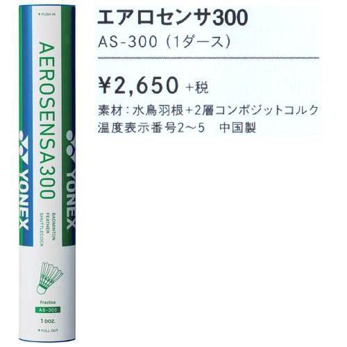エアロセンサ300